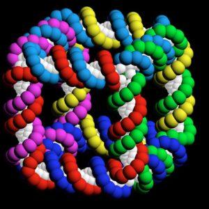 структура молекулы белка 8 характерных альфа-спиральных участков