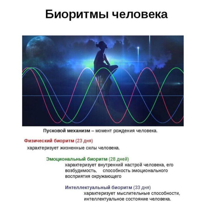 sovmestimost-po-bioritmam-bioritmy-cheloveka