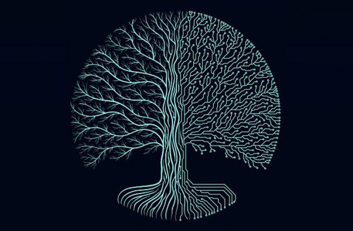 starenie-organizma-i-mikroleptonnye-izluchenija-4pole