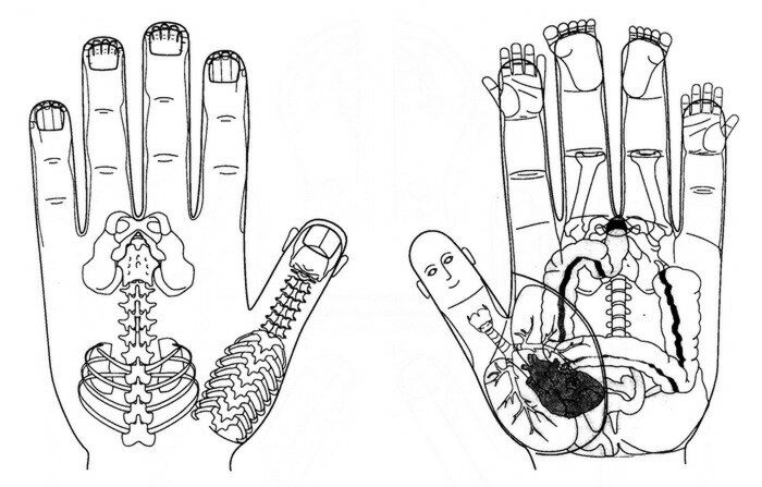 sudzhok-terapiya-ves-organizm-vyveden-na-ruki