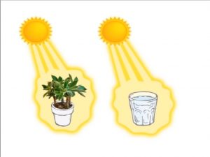 dzherald-pollak-chetvertaja-faza-vody-voda-zarjazhaetsja-ot-solnca