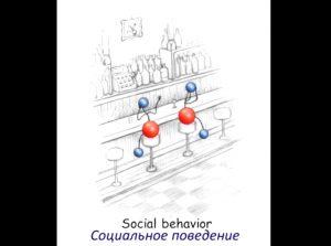 dzherald-pollak-chetvertaja-faza-vody-socialnoe-povedenie-vody