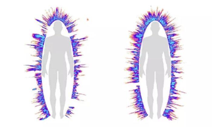 organizm-do-i-posle-strukturirovannoj-vody