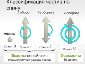 классификация частиц по спину