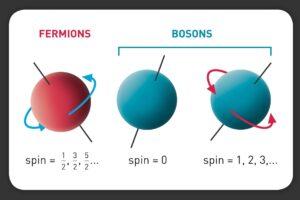 спин бозонов и фермионов