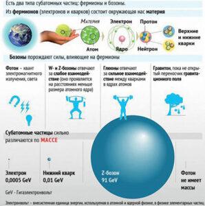 спин у бозонов и фермионов