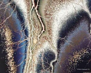 Микролептонная фотография молнии