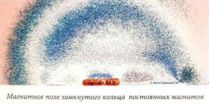 Микролептонное магнитное поле кольца магнитов